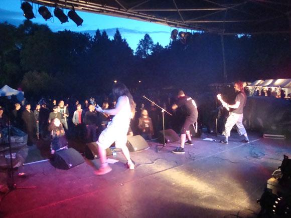 stadtfest_2009_12